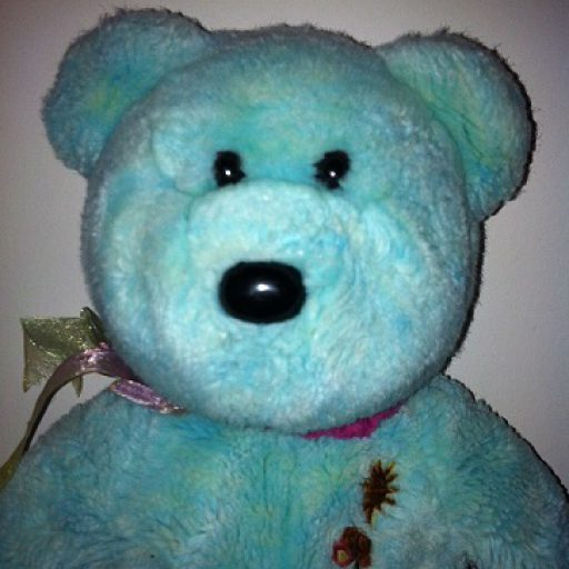cropped-teddy-11.jpg