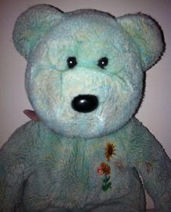 cropped-teddy-3.jpg