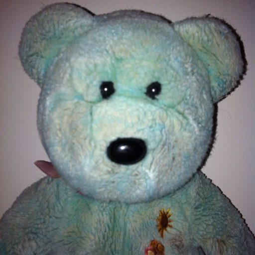 cropped-teddy-31.jpg