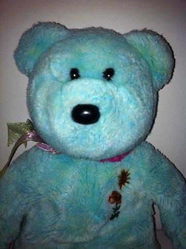 teddy 11