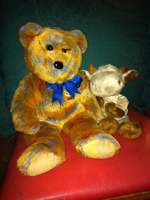 Teddy 15