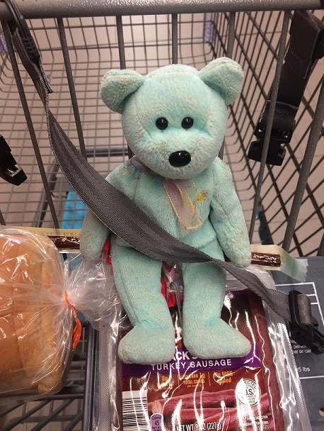 Teddy 32