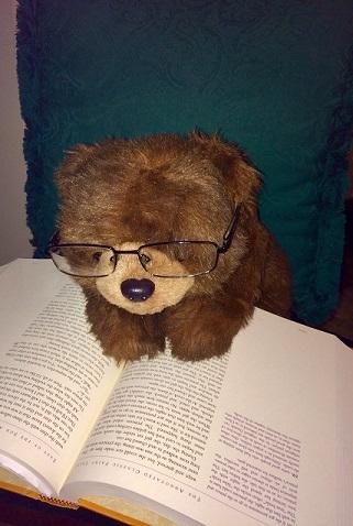 Teddy 38