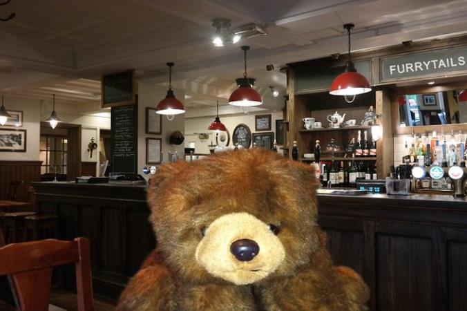 Teddy 43