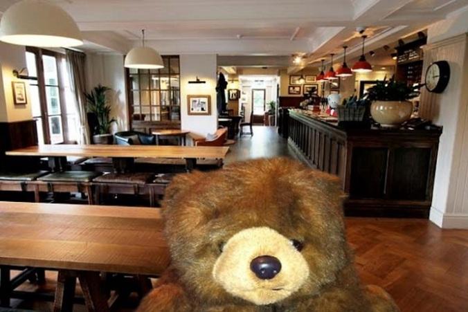 Teddy 44