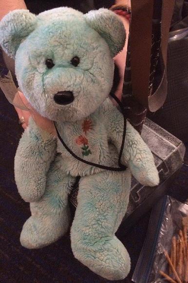 Teddy 17