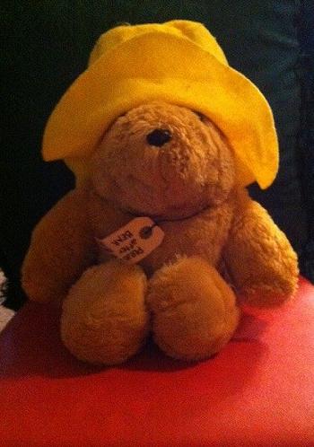Teddy 48