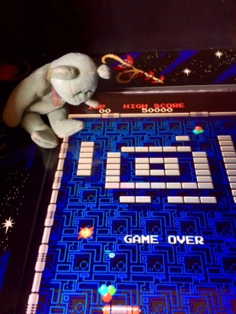 Arcade Teddy 03