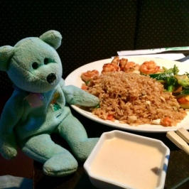 Chinese Teddy 02
