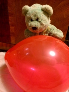Teddy 02