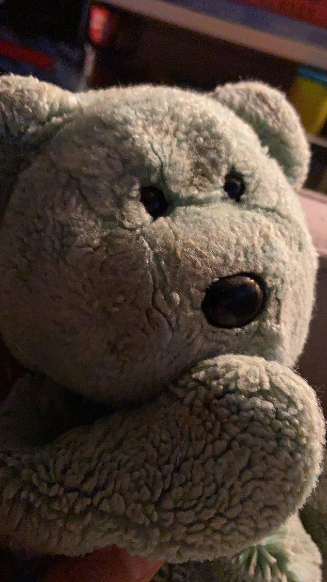 Thinking Teddy